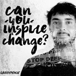 Work for Greenpeace