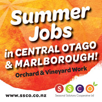 Backpacker Jobs Work New Zealand
