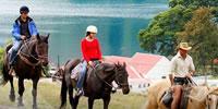 Walter Peak Horse Treks