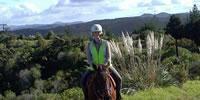 Horse Trek'n