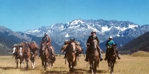 Alpine Horse Safaris