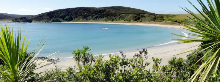 Windsurfing & kitesurfing in New Zealand | Things to see ...