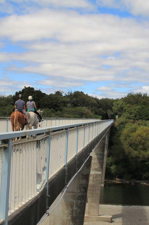 Manawatu Gorge (Image Credit: Destination Manawatu