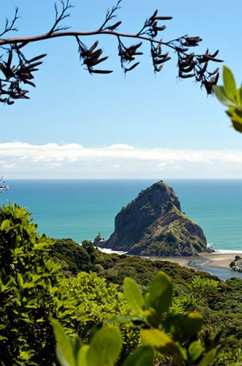 Piha Beach (Image Credit: Scott Venning)