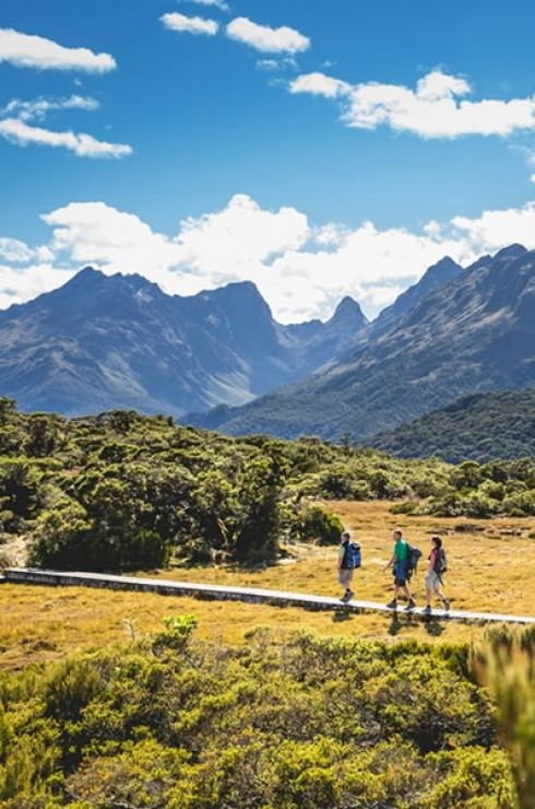 Routeburn Track (Image Credit: Miles Holden)