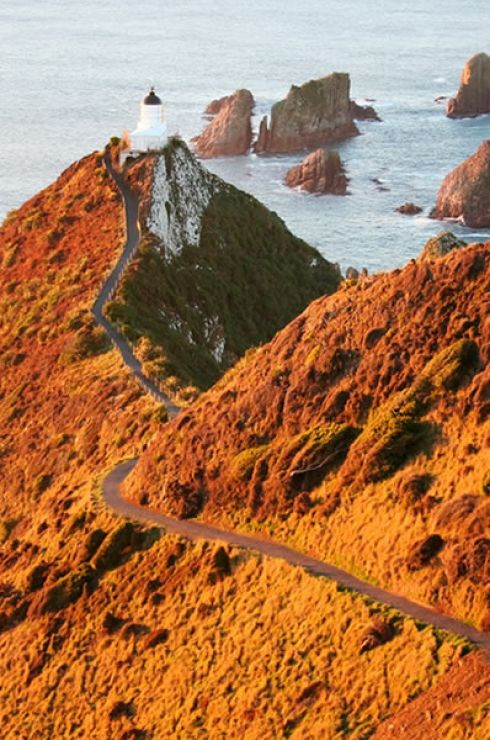 Nugget Point (Image Credit: Venture Southland)